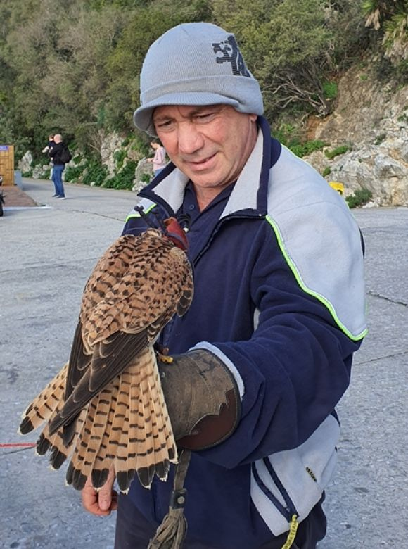 Mr Joe Flores reunited with the Kestrel he rescued.